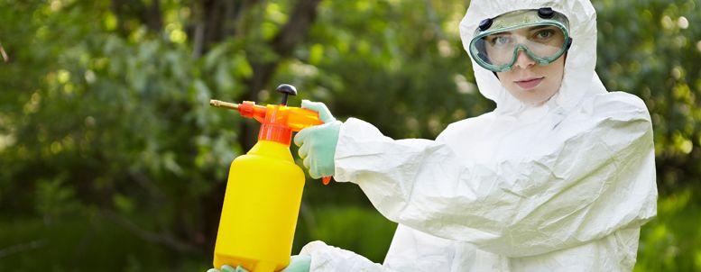 Disinfestazione Professionale delle zanzare: conviene davvero?