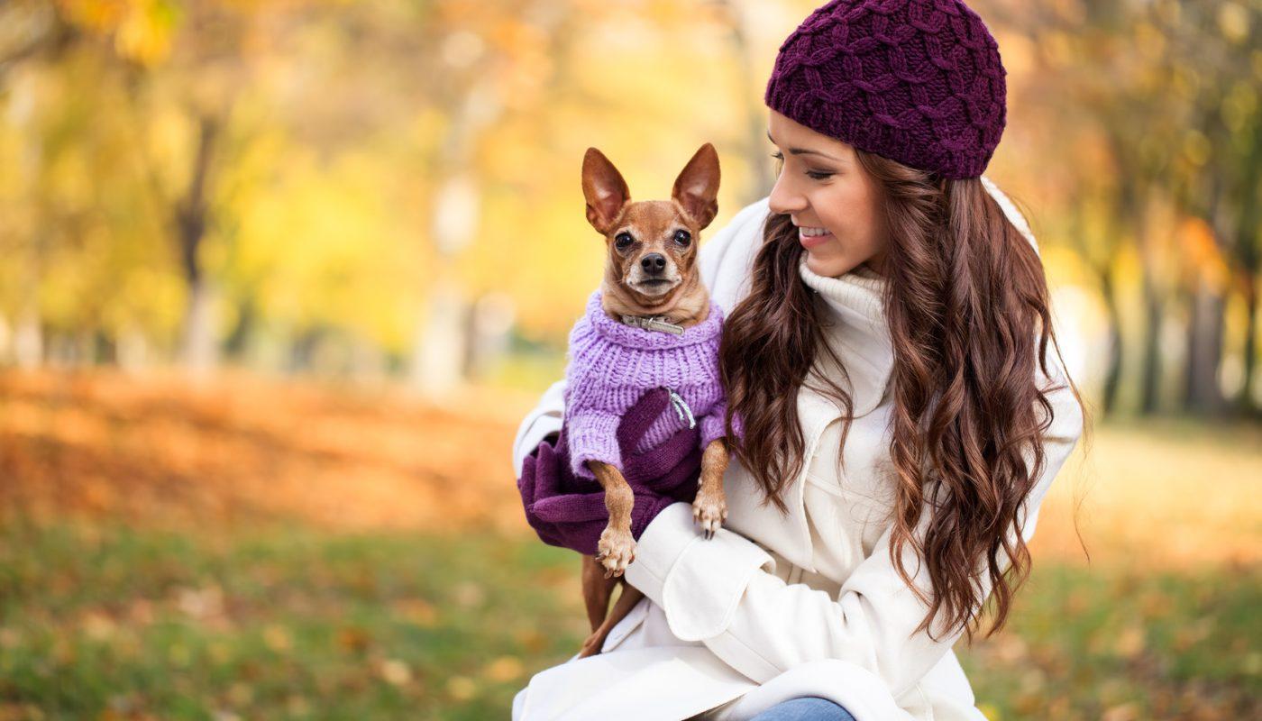 Sfilata moda canina F/W 2015: i cappottini!