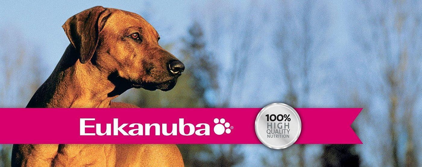 Eukanuba Day