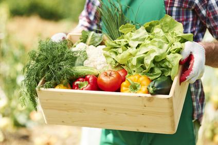 Giardinaggio: come fare l'orto