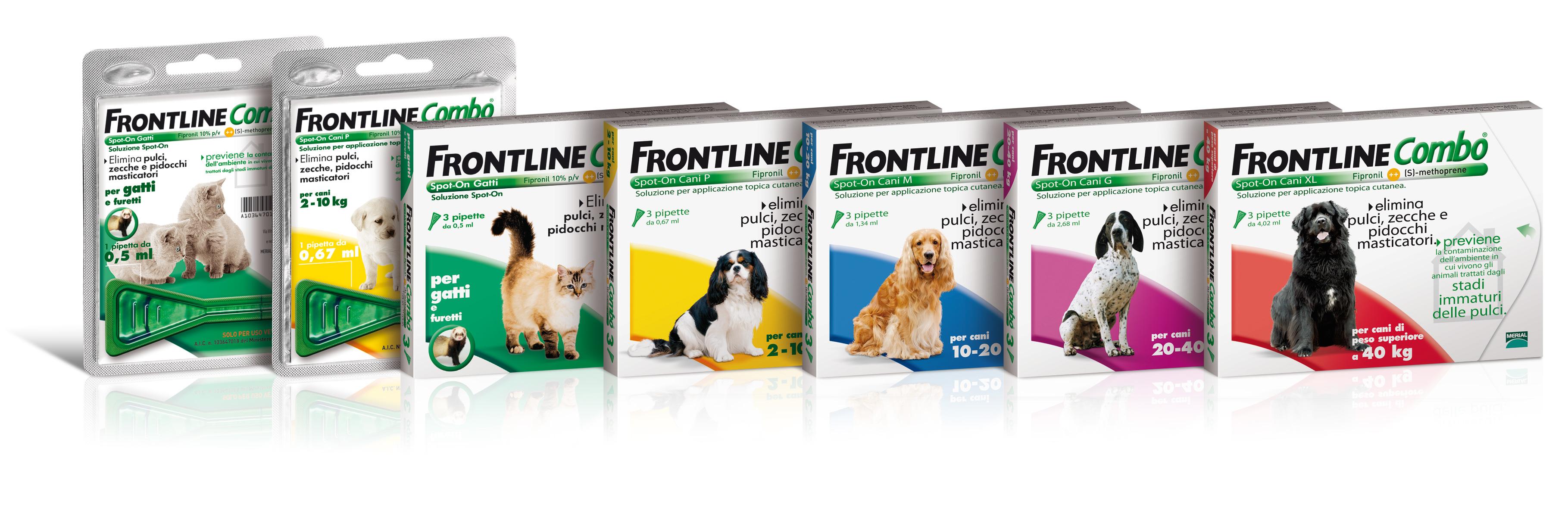 gamma_frontline_combo