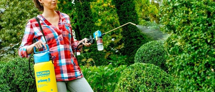 Insetticida zanzare giardino idee per la casa for Soluzioni zanzare giardino