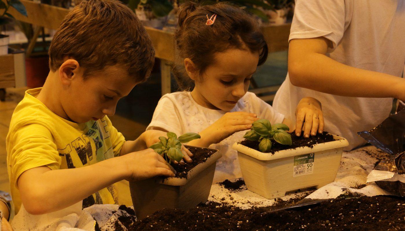 Profumi e sapori: piantiamo le aromatiche. Workshop di giardinaggio per bambini