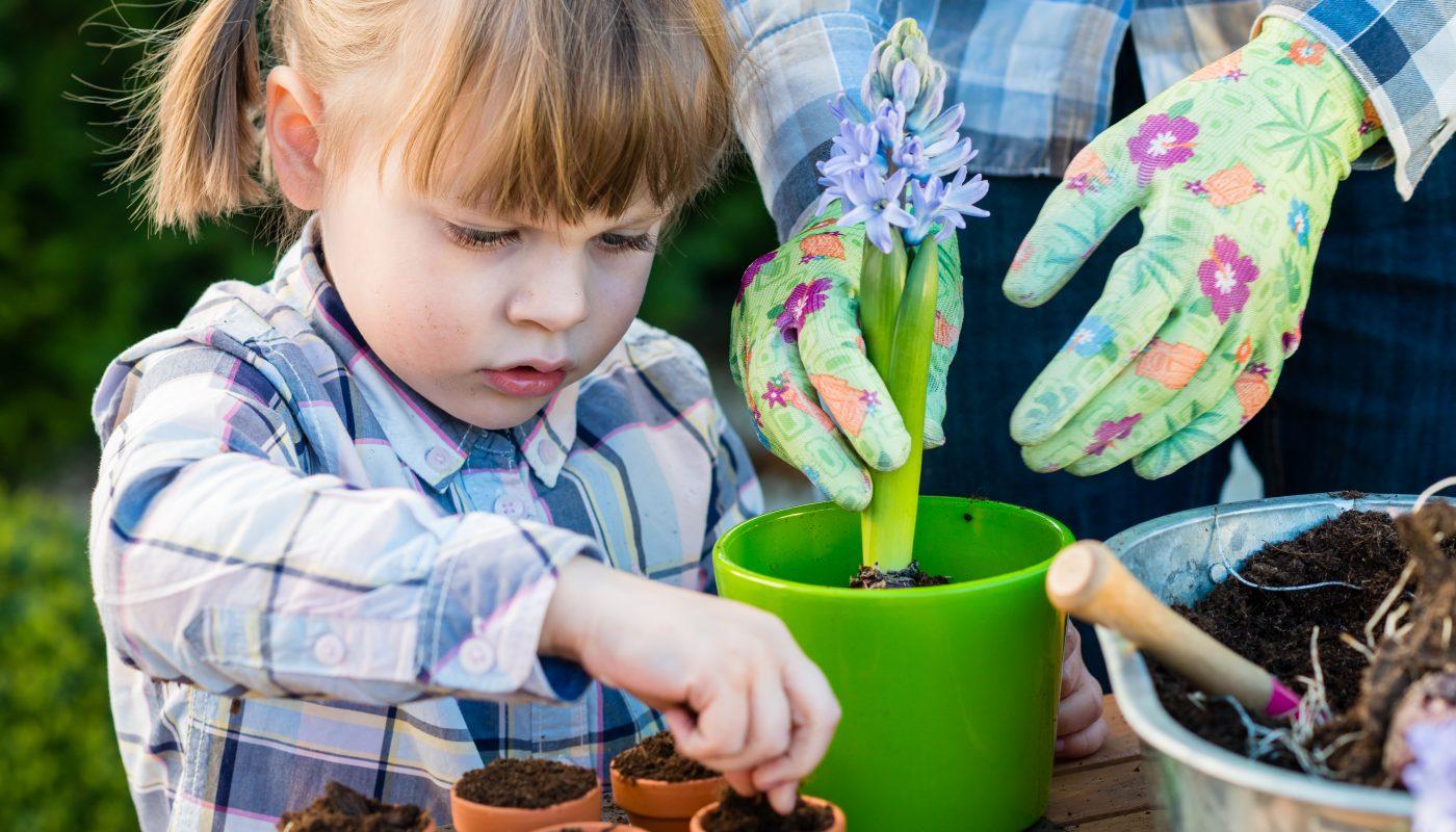 Garden for Kids: piantiamo i bulbi estivi!