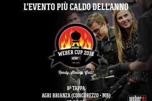 weber cup 21018