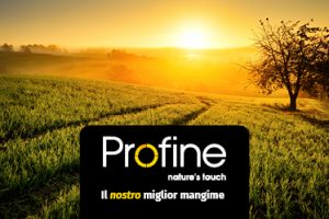 profine_FB