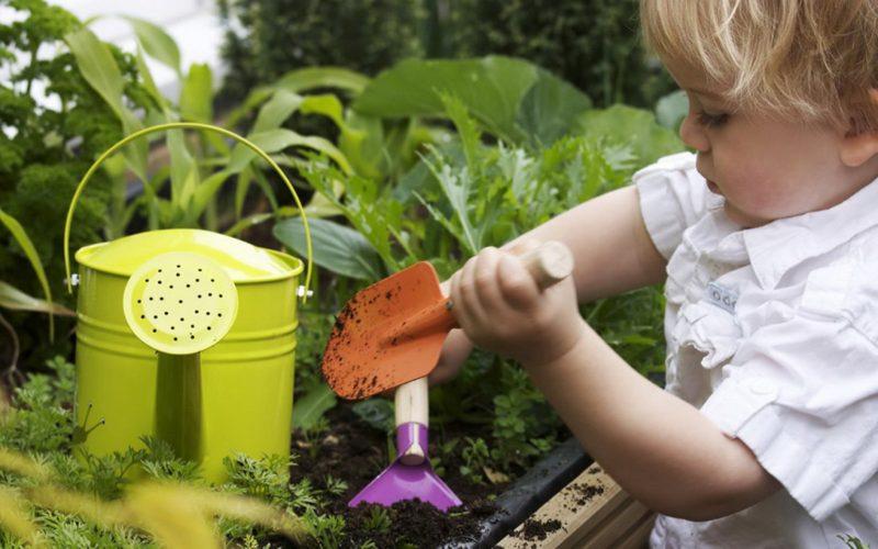 Il mio mini-orto: workshop di giardinaggio per bambini