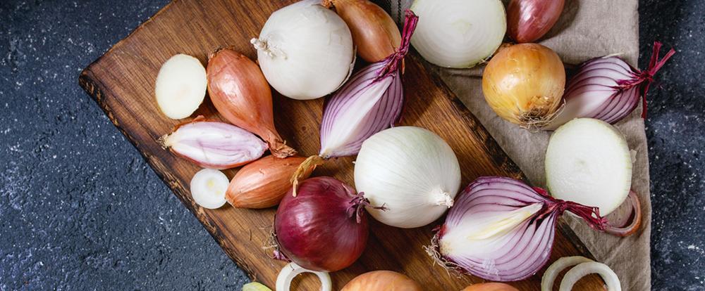Dall'orto alla tavola: Fantasia di Cipolle