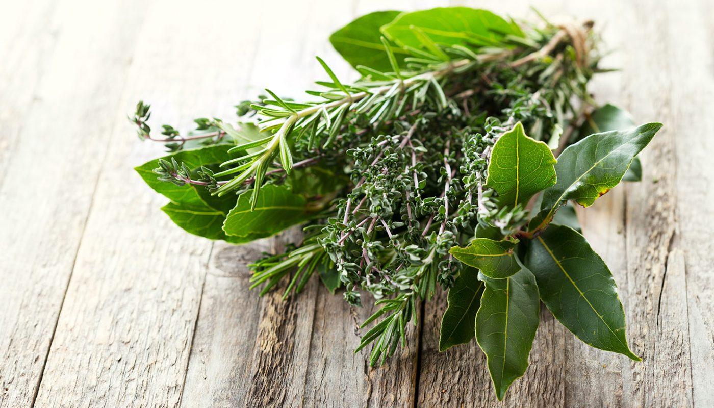 Dall'orto alla tavola: Le erbe aromatiche