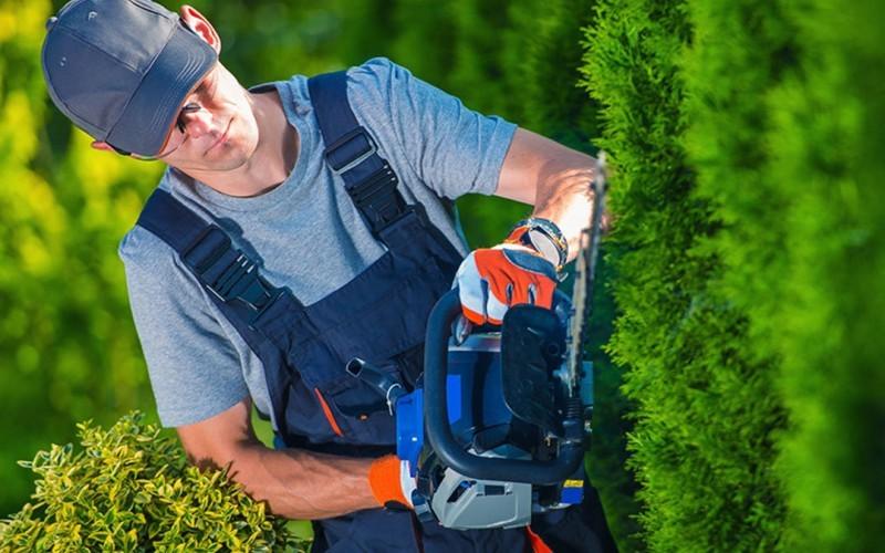 Noleggio macchine da giardinaggio