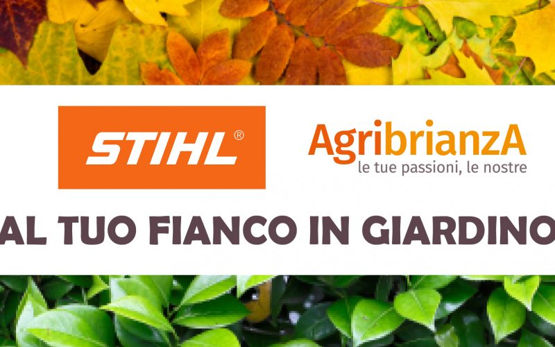 October DAY Stihl
