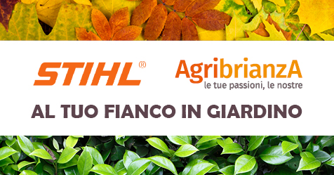 October DAY Stihl  Copia