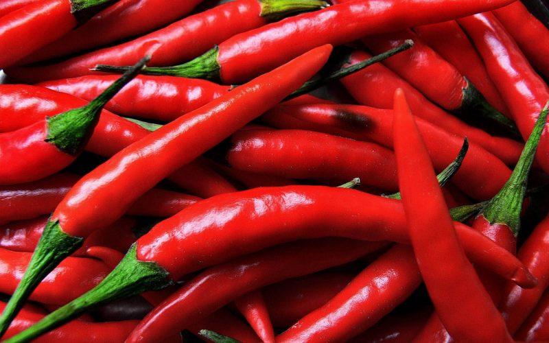 I peperoncini – Tecniche di coltivazione