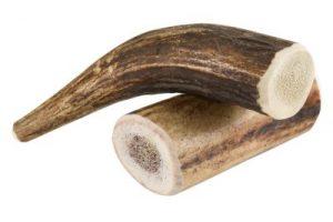 Corna di cervo per cani: snack masticativo naturale