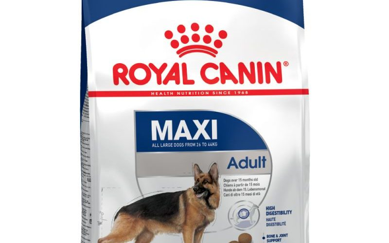 MAxi Adult Royal Canin a 49,90 €