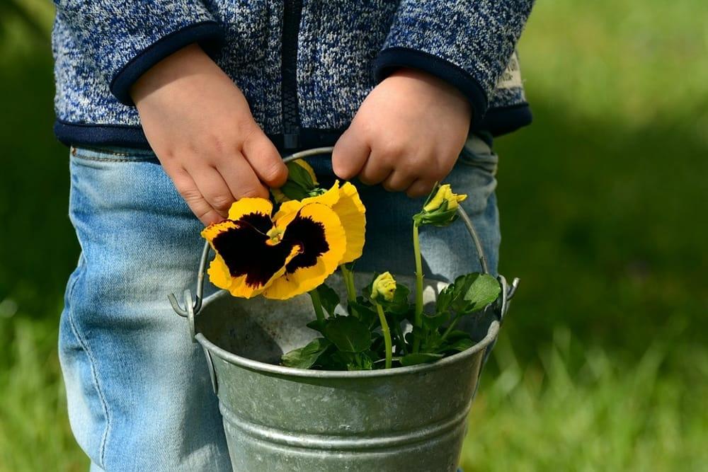 Il mio mini-vaso di fiori: workshop di giardinaggio per bambini