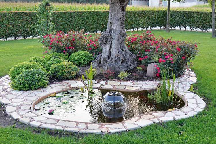 Laghetto in giardino: un angolo di piacevolezza