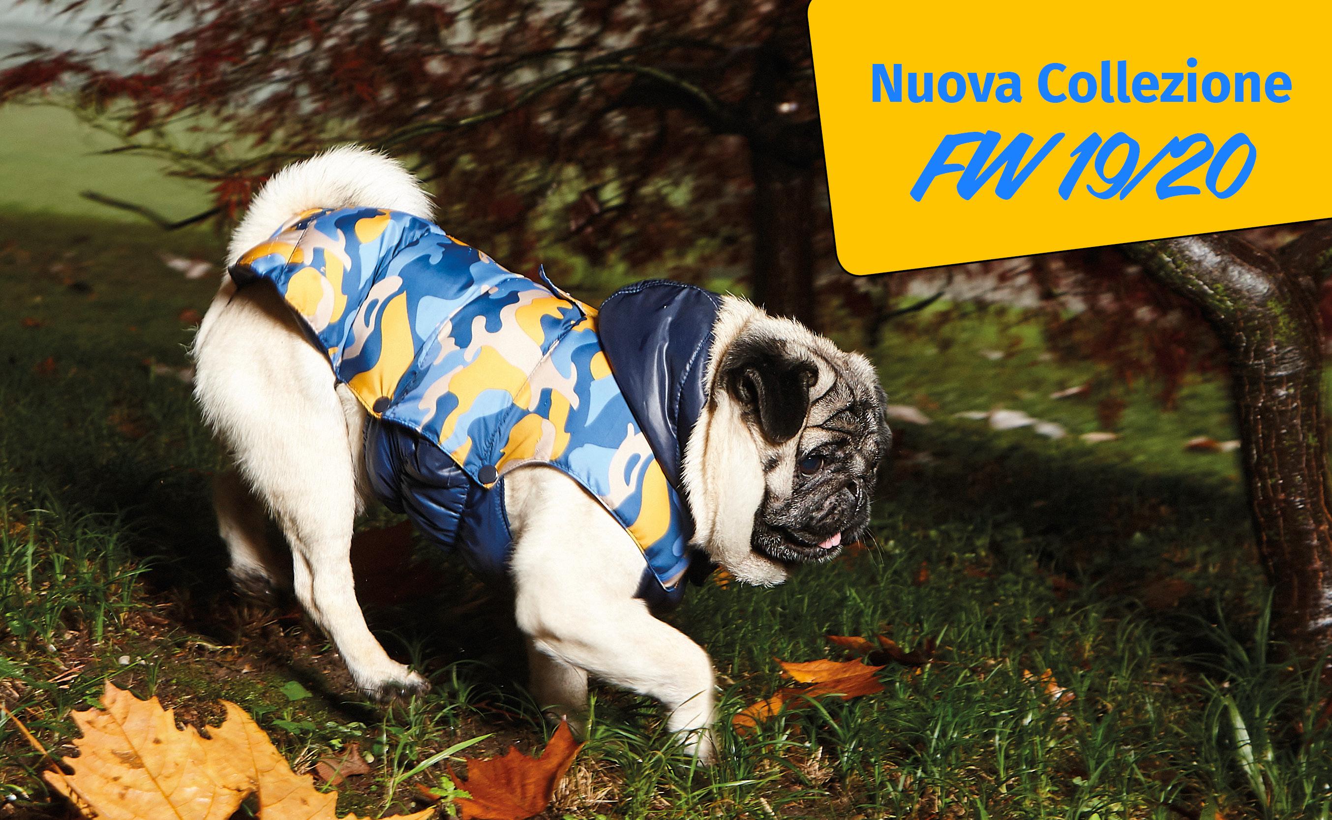 Nuova collezione... i cappottini 2019 per cane!