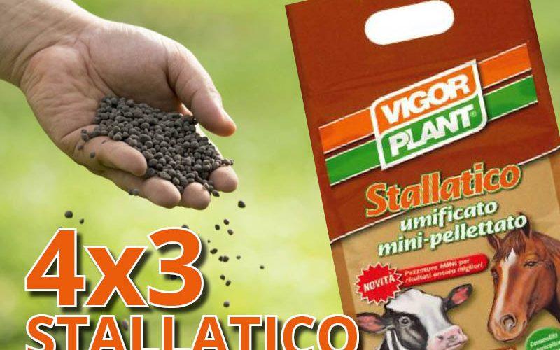 4×3 Stallatico