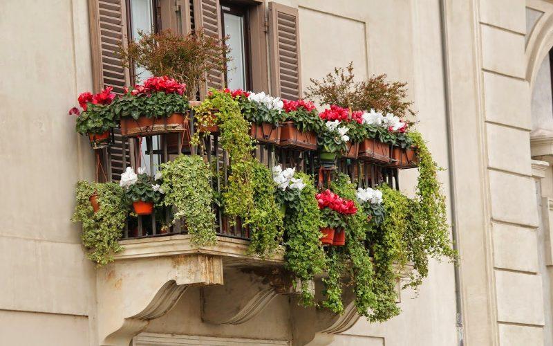 Bagnare i vasi sul balcone: kit irrigazione Il mio balcone PRECISION