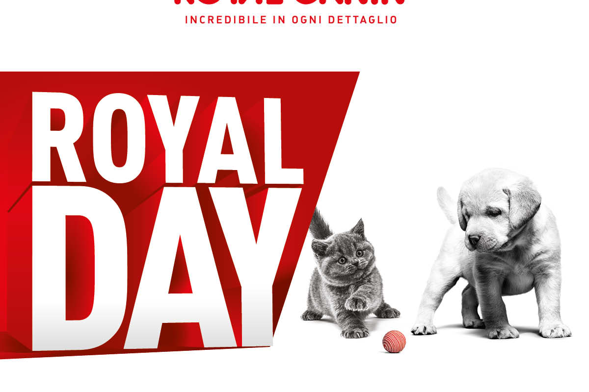 Royal Canin Day 17/10/20