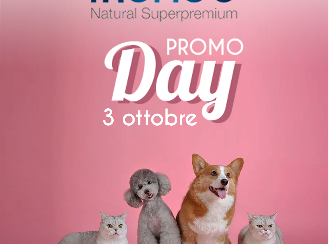 Monge Promo Day 03/10