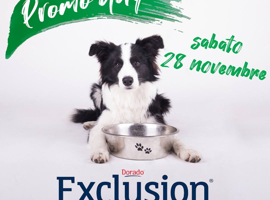 Exclusion Day – 28/11/20