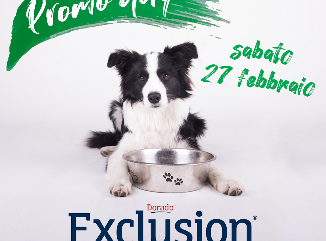 Exclusion Day – 27/02/21