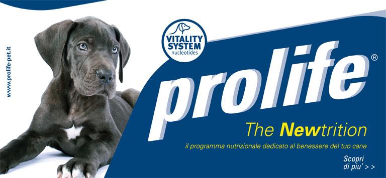 PET DAY: Prolife -10% 18/06/21