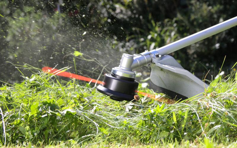 Come tagliare l'erba alta dopo l'estate